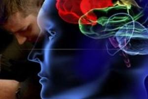 SWPS oferuje zajęcia z neuroekonomii