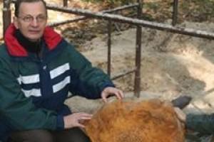 Naukowcy UAM znaleźli największy meteoryt
