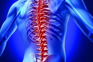 Studiuj fizjoterapię w Elbląskiej Uczelni Humanistyczno - Ekonomicznej