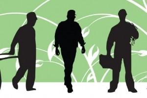 AFiB Vistula zaprasza na Green Economy in Poland: Chance for the Labour Market
