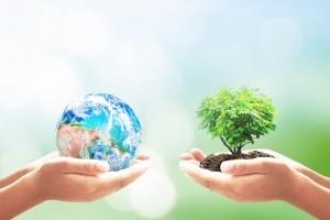 Ekologiczny konkurs Akademii Morskiej