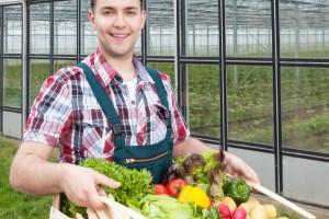 Nowe inżynierskie studia na UJK - rolnictwo ekologiczne