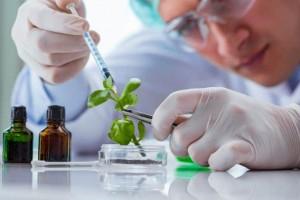 Biotechnologia na Politechnice Krakowskiej