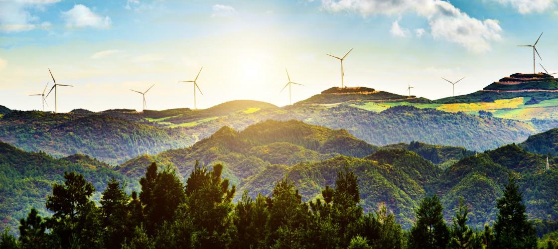Green Accademy - studia podyplomowe o ekologii i zrównoważonym rozwoju