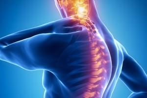 Chcesz zostać fizjoterapeutą? – studiuj w Mazowieckiej Uczelni Medycznej