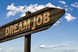 Czy absolwenci muszą pracować w swojej specjalizacji?