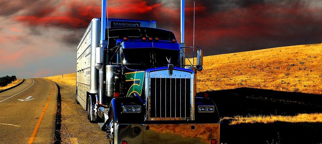 Logistyka, Transport, Spedycja